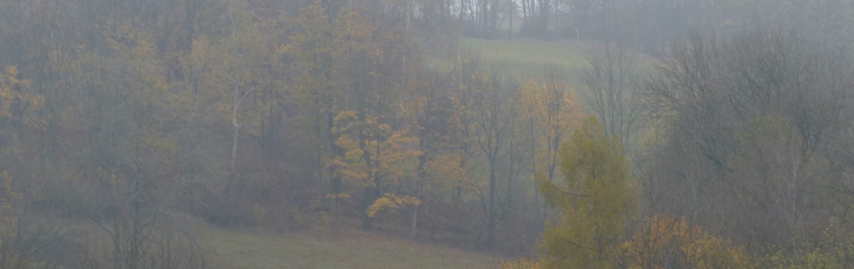 Natur im Osterzgebirge