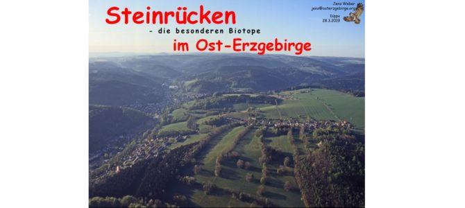Steinrücken-Vortrag am Donnerstag, 28. März 2019, im Dippser Grüne-Liga-Büro