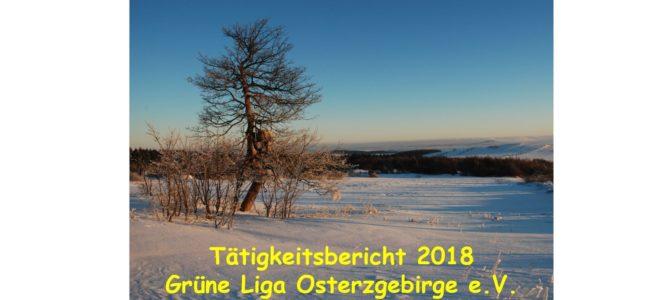 Tätigkeitsbericht 2018 und Jahresversammlung
