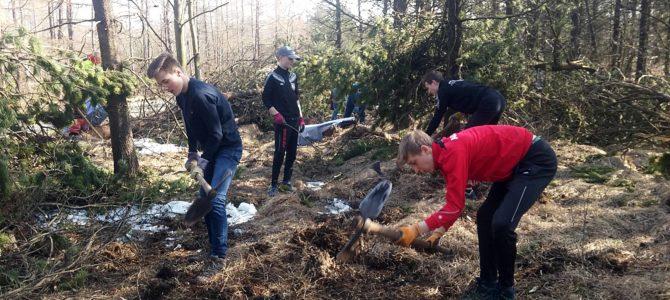 Altenberger Madagaskar-AG pflanzt 500 neue Ebereschen am Kahleberg