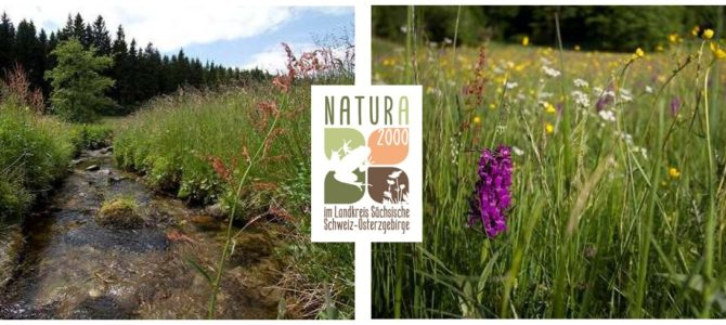 LPV – Führung durch das Natur- und Wanderparadies Gimmlitztal am 15.6. und Mal- und Zeichenwettbewerb Natur