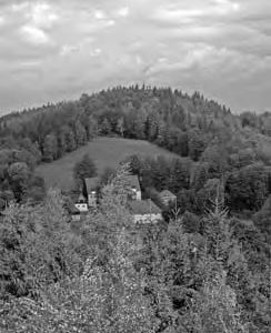 NATURA 2000 Gebietsbetreuung: Pöbelbachtal und Hofehübel