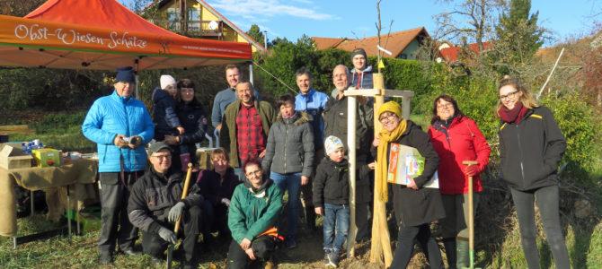 Streuobstwiese 'Am Sonnenhang' lebt auf – Wurgwitzer pflanzen 20 Bäumchen und übernehmen Patenschaften
