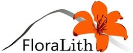 """FloraLith-Workshop """"Pflege der Steinrücken und Bergbaubiotope im Erzgebirge"""" Mittwoch, 18. März 2020, TU Dresden"""