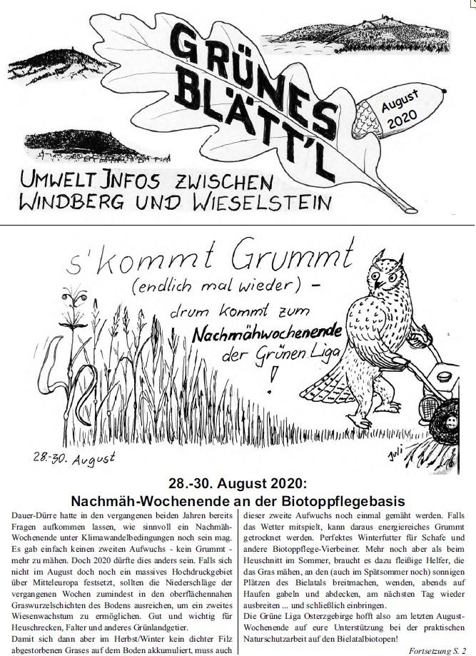 Grünes Blätt'l 08/2020