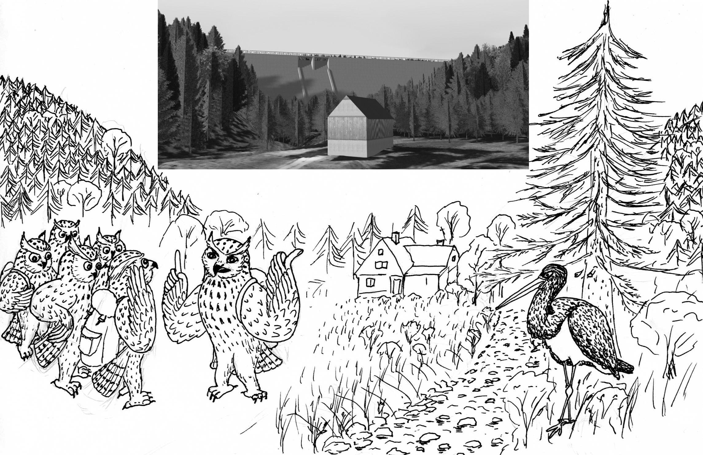 11. Oktober: Naturkundliche Wanderung zur geplanten Dammbaustelle an der Roten Weißeritz oberhalb Waldbärenburg