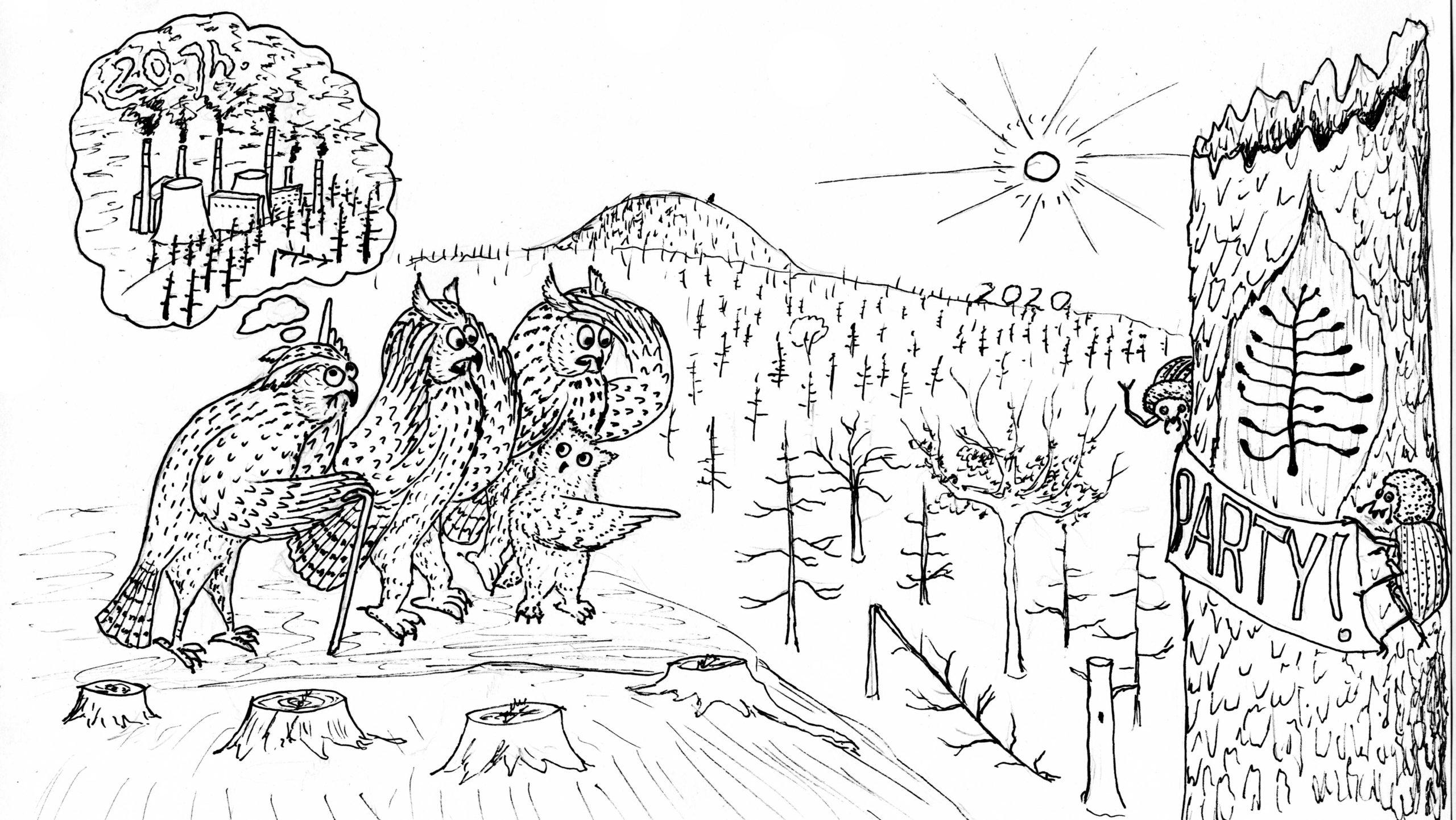 2020: Waldschäden Erzgebirge 2.0