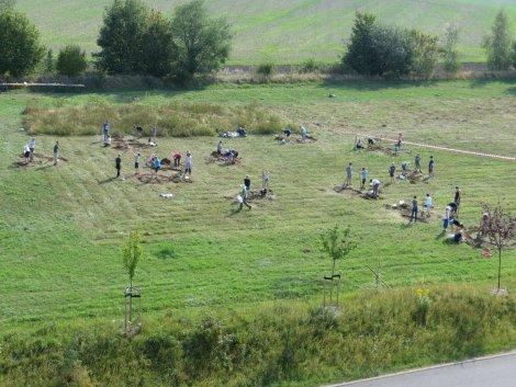 Dippser Gymnasiasten gestalten Blühfläche am Heidepark