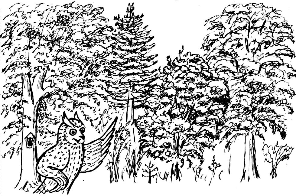 Bürgermitsprache vor der Neufassung des Sächsischen Waldgesetzes