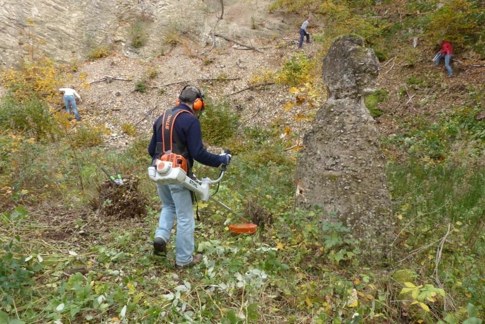 Naturschutzeinsatz im nordwestlichen Zipfel des Landkreises Sächsische Schweiz – Osterzgebirge