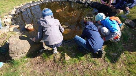 Umweltbildung nachhaltig: Kooperation mit der Grundschule Berggießhübel