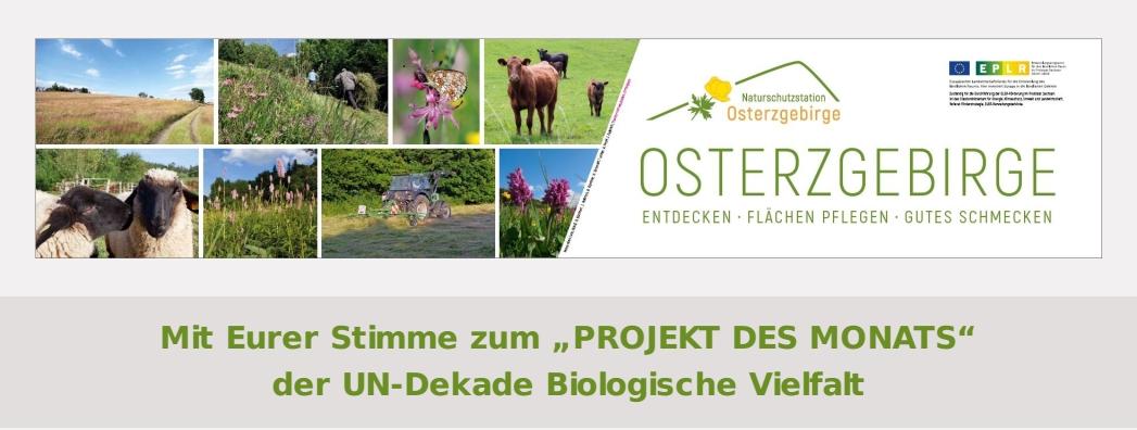 """Eure Stimme für: """"Osterzgebirge entdecken, Flächen pflegen, Gutes schmecken""""!"""