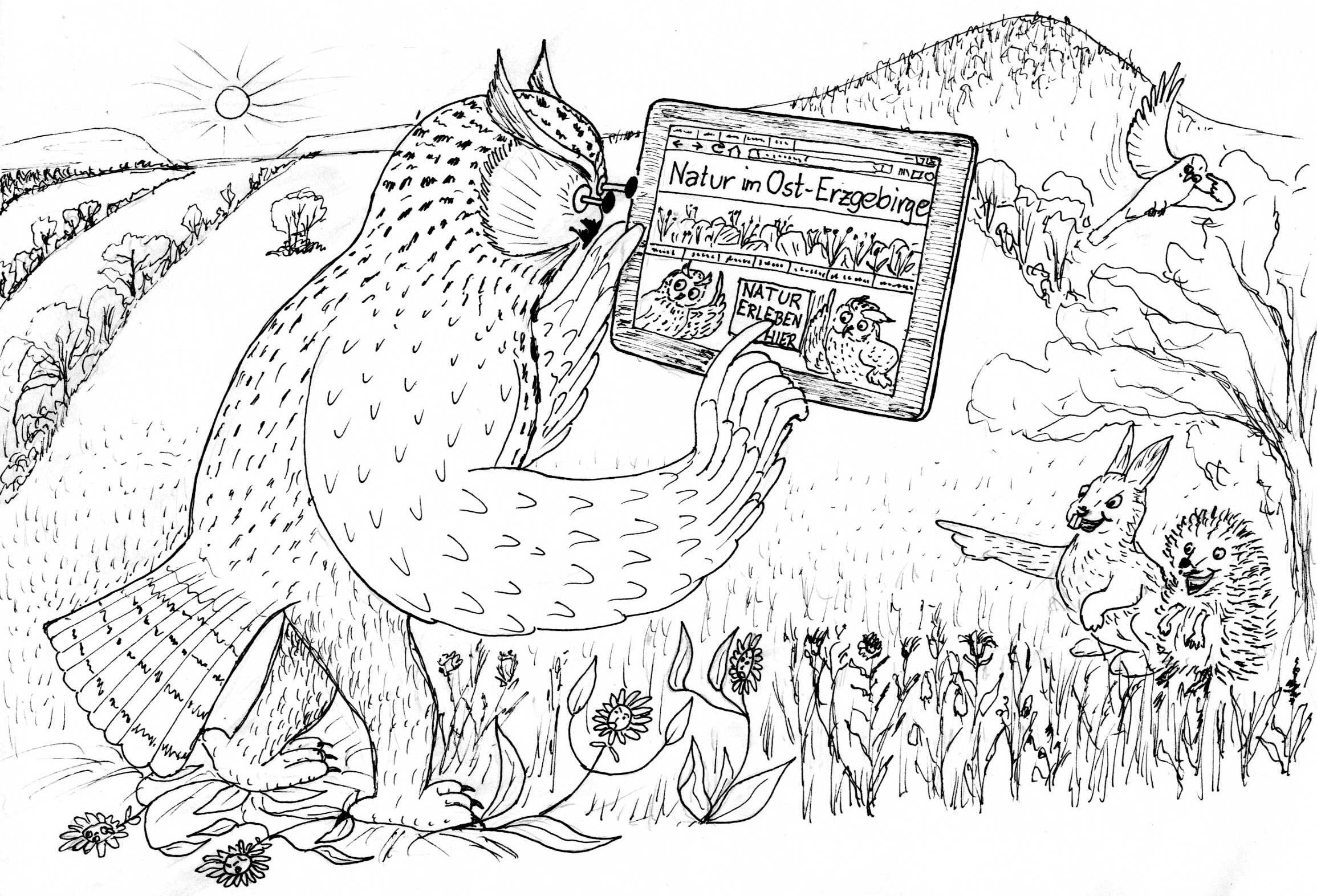 osterzgebirge.org – DIE Internetplattform zu Natur und Naturschutz im Ost-Erzgebirge