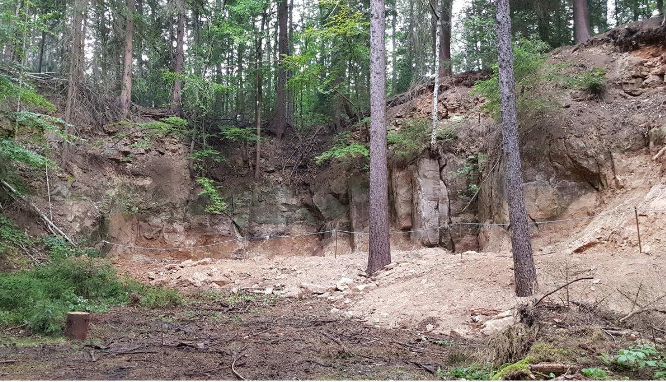 """Naturdenkmal """"Am Flügel Jägerhorn"""" bei Grillenburg wieder als Geotop erlebbar – eine Initiative des Geoparks Sachsens Mitte."""