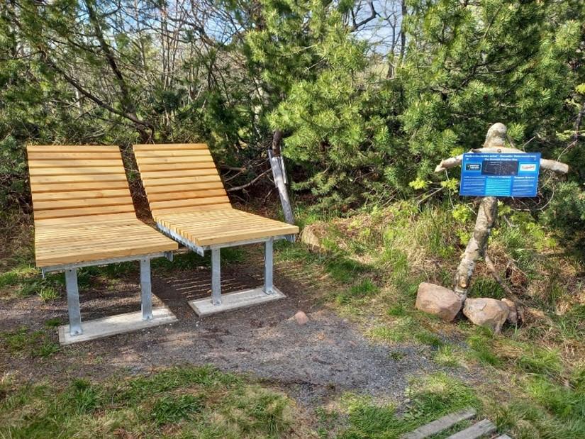 Sternguckerbänke am Georgenfelder Hochmoor