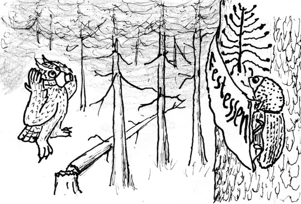 Sonntag, 13.6.:  Wald, wie gehts?  Naturkundlich-forstliche Wanderung an den Tharandter Weißeritzhängen