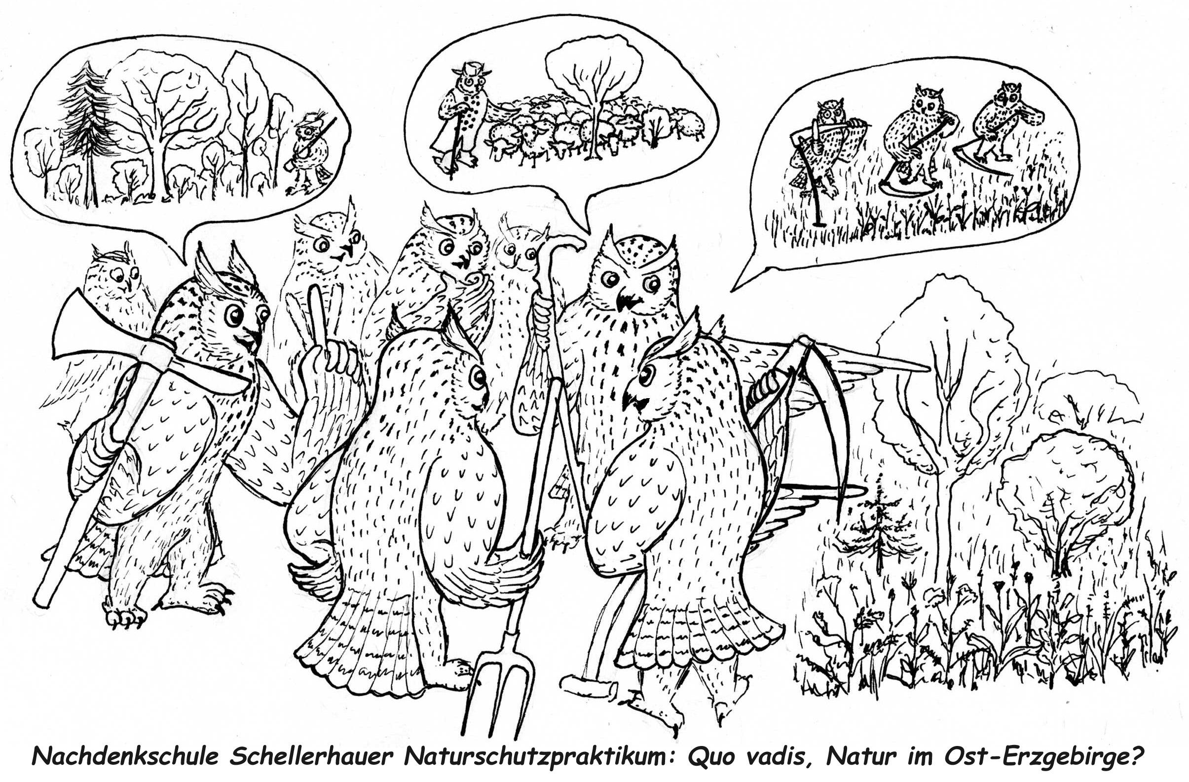 """Schellerhauer Naturschutzpraktikum 6. bis 13. August und Zusatzpraktikum """"Internationales Praxisseminar Naturschutz"""" 20. bis 26. August"""