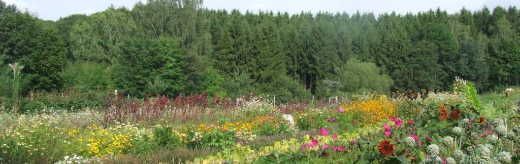 Tag der Kulturpflanzenvielfalt 19.9.2021 Umweltbildungshaus Johannishöhe